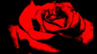 Solidarietà al Rosa Nera squat! Abbiamo conosciuto i compagni e le compagne dello squat Rosa Nera di Chania durante il meeting anarchico internazionale Tre Ponti svoltosi in Grecia, che ebbe […]